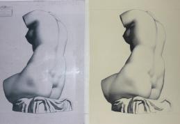 Venus_In_Progress